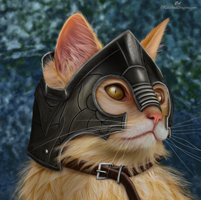 Cat in armor