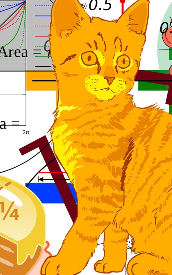 Orange Cat with Math