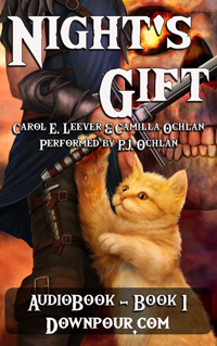 Nights Gift AudioBook on Downpour
